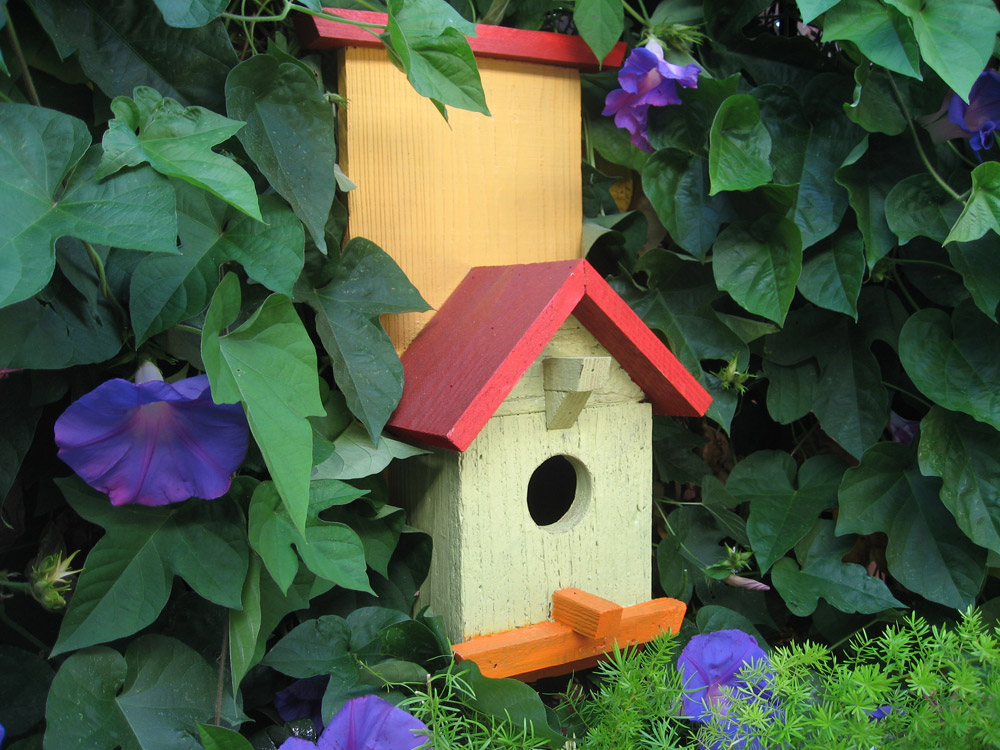 Birdhouse-wall-decor-painted